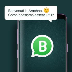 Arachno WhatsApp Business
